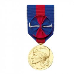 Service Militaire Volontaire Bronze Doré avec Rosette